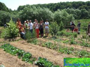 6 октября 2011г. начало нового учебного года в  школе органической  жизни  «К  Земле с любовью» г.Киев